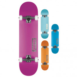 Skate Globe Goodstock